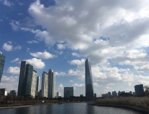 韓国へ行ってきました!